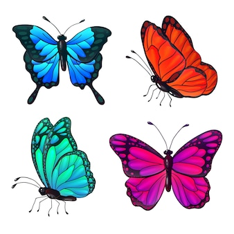 다채로운 현실적인 나비 세트입니다. 벡터 일러스트 레이 션
