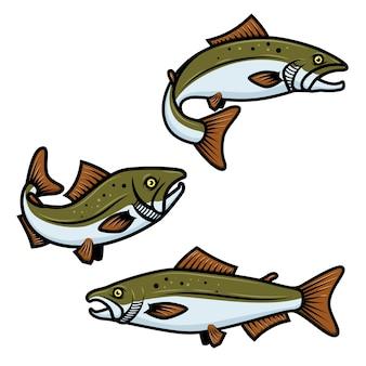 白い背景の上のカラフルなサーモンの魚のサインのセット。マス釣り。ロゴ、ラベル、エンブレム、サインの要素。図