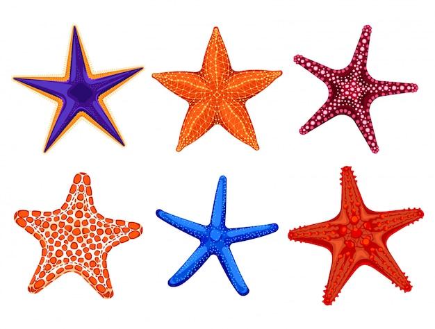 Набор красочных реалистичных морских звезд