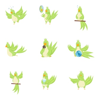 Набор милый очаровательный зеленый попугай в разных повседневных действиях. плоский стиль.
