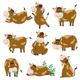 Набор милый персонаж быков в различных позициях