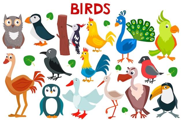 Набор милых мультипликационных птиц