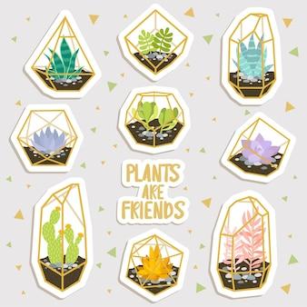 幾何学的なテラリウムステッカーのかわいい漫画のサボテンと多肉植物のセット。かわいいステッカーやパッチやピンのコレクション。植物は友達です