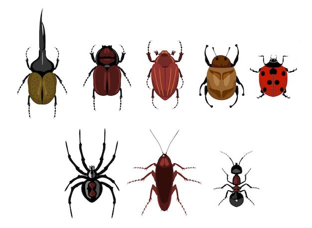 Набор милый мультфильм насекомых. набор ползающих насекомых - муравей, паук, жук, таракан, божья коровка. различные жуки на изолированной предпосылке.