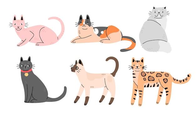 フラット漫画スタイルのさまざまな品種のかわいい猫のセット猫のキャラクターのコレクション