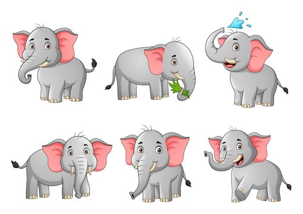 Набор иллюстрации шаржа милый слон