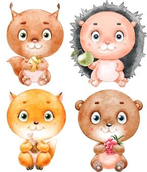 수채화로 그린 귀여운 숲 동물 고슴도치 여우 다람쥐 곰 세트