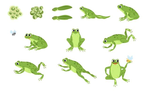 귀여운 개구리와 개구리 왕자 만화 캐릭터의 집합입니다. 개구리 점프 애니메이션 시퀀스