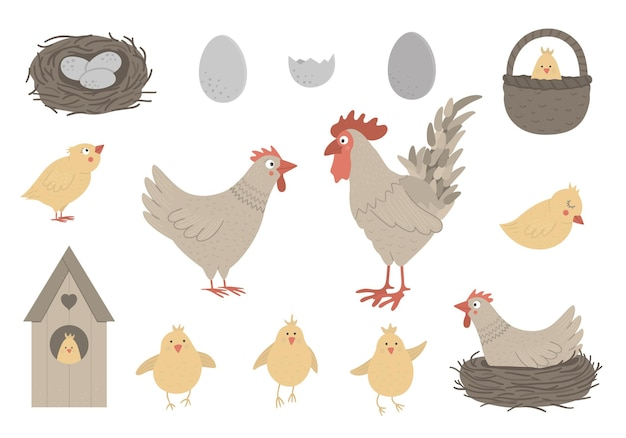 小さなひよこ、卵、巣とかわいい面白い鶏とオンドリのセット。春やイースターの面白いイラスト。家畜のコレクション
