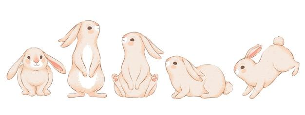 さまざまなポーズでかわいい面白いウサギのセット。手作りの水彩画の模倣。白い背景で隔離。