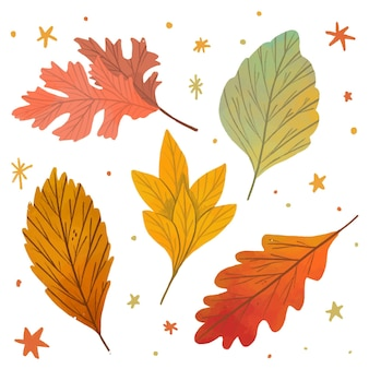 かわいい手描きの葉のセット