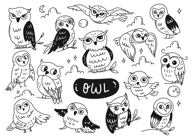 Набор милой совы каракули линии искусства, изолированные на белом