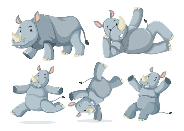 귀여운 코뿔소 세트