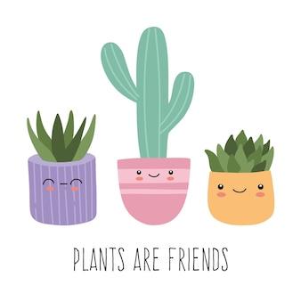 Набор милых суккулентов или экзотических кактусов с забавными рожицами в красочных горшках