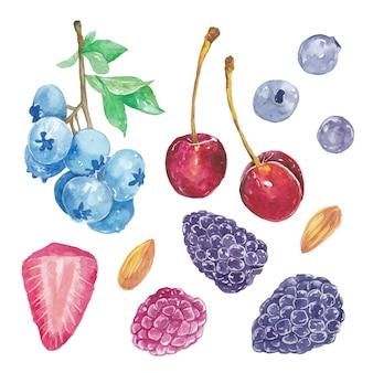 Набор милых акварельных ягод фруктов, вишни, ежевики, крыжовника, клубники