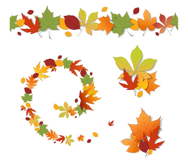 Набор декоративных осенних листьев на белом фоне