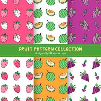 장식 손으로 그린 과일 패턴의 집합