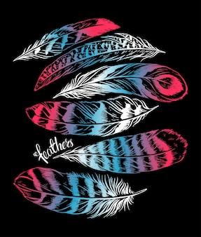 さまざまな美しい羽のセット。手描きイラスト