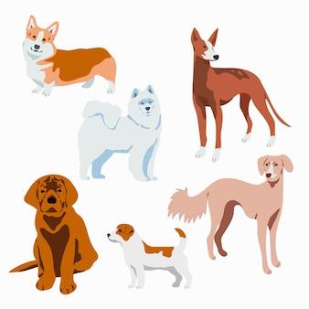 Набор разных пород собак в плоском стиле