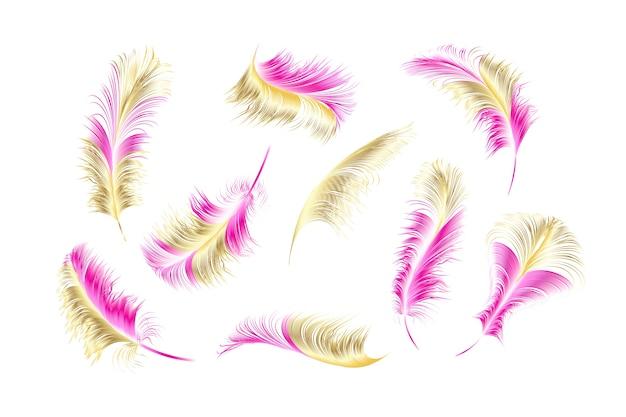 Набор различных падающих пушистых закрученных перьев на белом фоне.