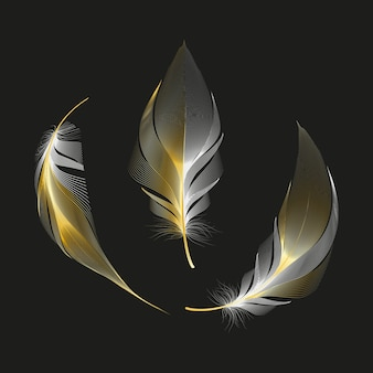 白い背景の上の異なる落下ふわふわ回転羽のセット