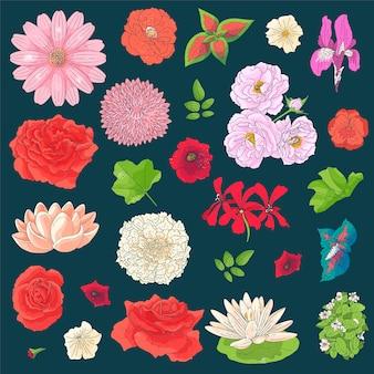 落書きスケッチスタイルでさまざまな花のセット。手描きの要素