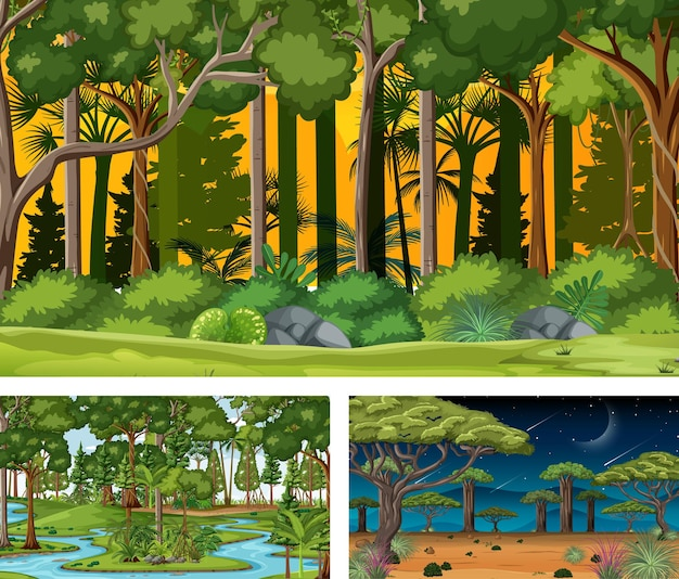 さまざまな森の水平方向のシーンのセット
