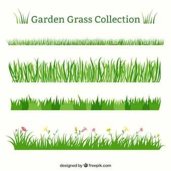 Set of different garden grass