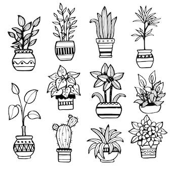 냄비에 다른 손으로 그린 집 식물의 집합입니다. 고립된 장식 식물:선인장, 알로에, 크라술라, 디자인 서식 파일, 아이콘, 선물 카드용 꽃. 스케치 스타일 벡터 일러스트 레이 션.