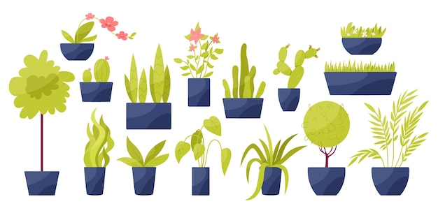 냄비에 녹색 잎을 가진 다른 집 식물의 집합입니다. 방 장식을위한 열대 꽃과 선인장. 삽화