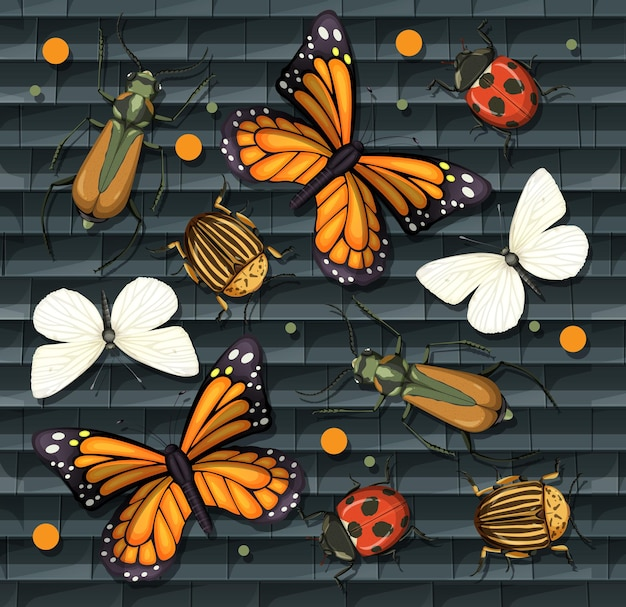 分離されたさまざまな昆虫のセット