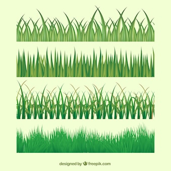Set of different lawns