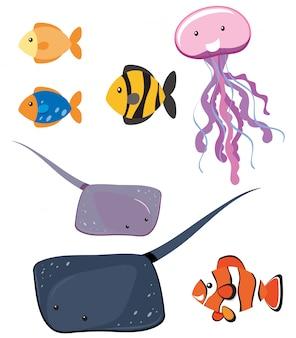 異なる海の動物のセット