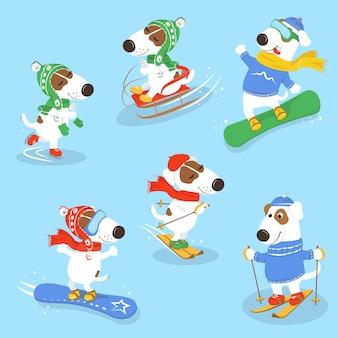 犬とウィンタースポーツのセット