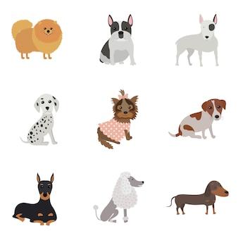 さまざまな品種の犬のセット