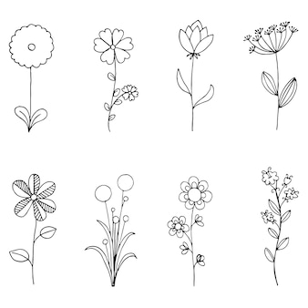 Set of doodle flora, Wild and Nature flowers