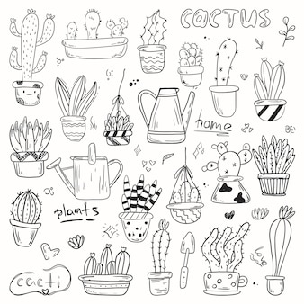 냄비에 집 식물의 낙서의 집합입니다. 다양한 모양과 크기의 귀여운 흑백 줄 지어 선인장과 다육 식물.