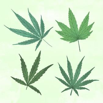 描かれた植物大麻の葉のセット