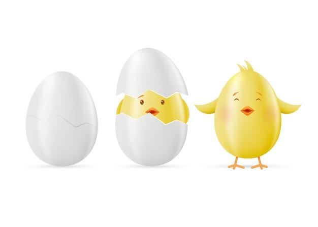 卵と黄色のイースターのセットは白にしがみついています。