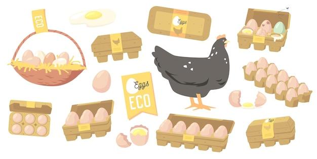 卵農家の生産、有機農場の食品デザイン要素、市場、店または店のアイコンのセット。箱またはバスケットに入った家禽生産、農業、鶏肉および卵。漫画のベクトル図