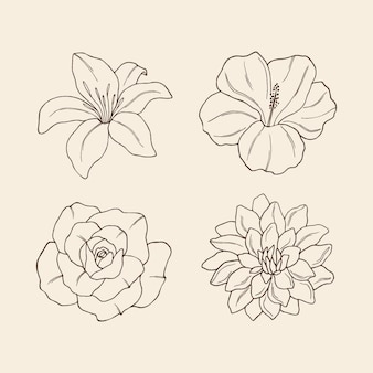 Набор элегантных рисованной цветов