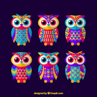 Set of ethnic colored owls