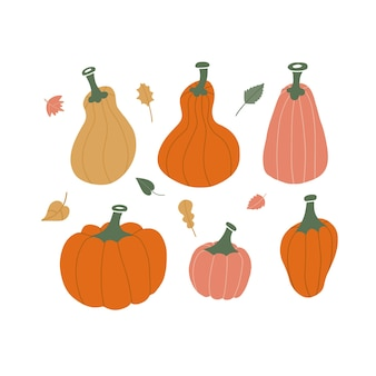 Набор осенних листьев и желто-красных и оранжевых тыкв на белом фоне в уютном теплом стиле хюгге ...