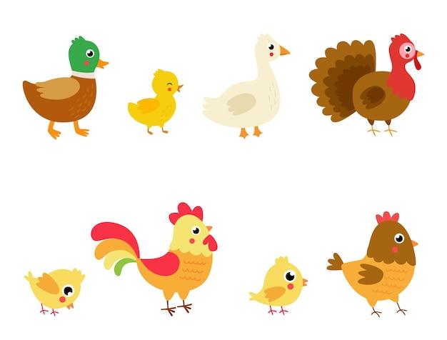 Набор сельскохозяйственных птиц в мультяшном стиле. коллекция детских иллюстраций.