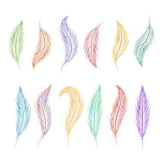 異なる色で手描きの羽のセット