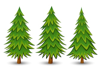 Set of fir trees on a white background