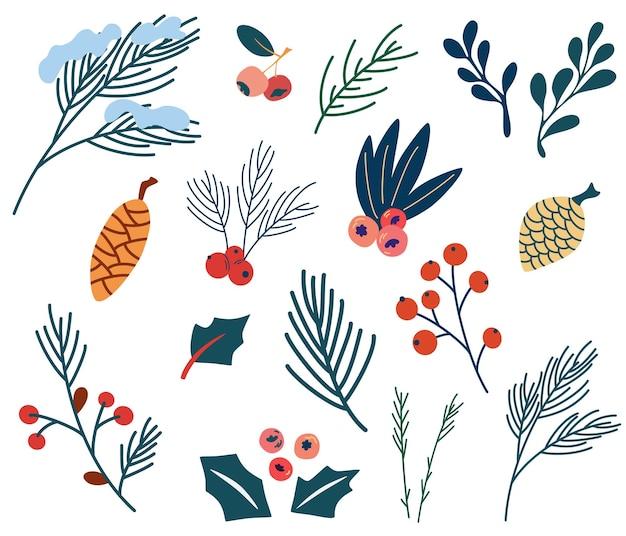 モミの小枝のベリーとコーンのセットです。クリスマスの植物。ホリーベリー、マツまたはモミの実、ヤドリギの枝、針葉樹。休日のシンボル。冬の休日とお祝い。ベクトルの装飾。
