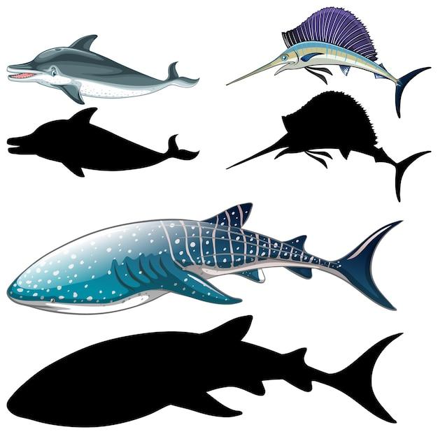 魚のキャラクターと白い背景の上のシルエットのセット