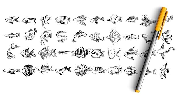 白で隔離の魚の落書きのセット
