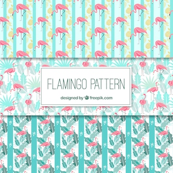 Set of flamingos patterns with plants